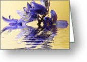 Blue Flowers Greeting Cards - Blue ripples Greeting Card by Sharon Lisa Clarke