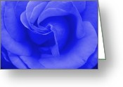 Robyn Stacey Photo Greeting Cards - Blue Rose Greeting Card by Robyn Stacey