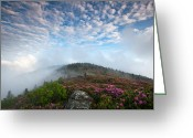 Crest Greeting Cards - Blue Skies Above Catawba Rhododendron in the Roan Mountain Highlands Greeting Card by Mark VanDyke