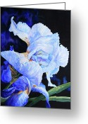 Watercolor Flowers Prints Greeting Cards - Blue Summer Iris Greeting Card by Hanne Lore Koehler
