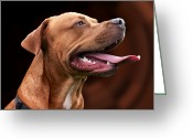 Panting Dog Greeting Cards - Blue the Rhodesian Greeting Card by Abbie Shores