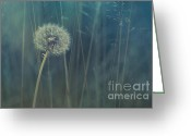 Flowers Greeting Cards - Blue Tinted Greeting Card by Priska Wettstein