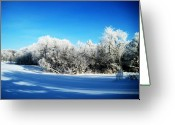 Winter Storm Greeting Cards - Blue Greeting Card by Toni Jackson