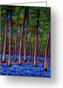 Contemporary Greeting Cards - Bluebell Wood Greeting Card by Johnathan Harris
