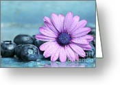Food And Beverage Greeting Cards - Blueberries and daisy Greeting Card by Sandra Cunningham