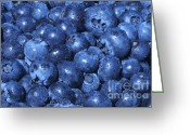 Luscious Greeting Cards - Blueberries with Waterdrops Greeting Card by Sharon  Talson