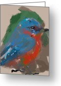 Jim Thomas Greeting Cards - Bluebird Greeting Card by James Thomas