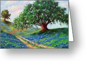Oak Tree Greeting Cards - Bluebonnet Road Greeting Card by David G Paul