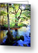 Florida Swamp Greeting Cards - Blues in Florida Swamp Greeting Card by Carol Groenen