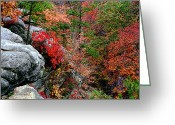 Sandstone Bluffs Greeting Cards - Bluffs Over Pickle Creek at Hawn State Park Greeting Card by Greg Matchick