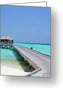 Beach Pictures Greeting Cards - Boardwalk in Paradise Greeting Card by Corinne Rhode
