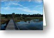 Lake Low Country Greeting Cards - Boardwalk   Greeting Card by Josh  Morgan