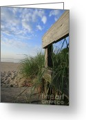 New England Seascape Greeting Cards - Boardwalk onto Beach Greeting Card by Karol  Livote