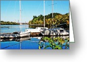 Pierre Chamblin Greeting Cards - Boats Greeting Card by Pierre Chamblin