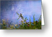 Larry Walker Greeting Cards - Bobolink Among The Wildflowers Greeting Card by J Larry Walker