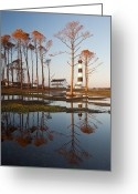 Stripes Greeting Cards - Bodie Island Lighthouse OBX Golden Sunset Reflections Greeting Card by Mark VanDyke