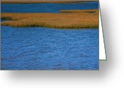 Great Egret Greeting Cards Greeting Cards - Bodie Island Marsh II Greeting Card by Steven Ainsworth