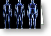 Body Image Greeting Cards - Body Shapes, Artwork Greeting Card by Roger Harris