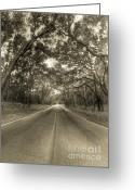 Sepia Greeting Cards - Bohicket Road Johns Island South Carolina Sepia Greeting Card by Dustin K Ryan