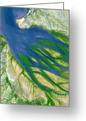 Aster  Greeting Cards - Bombetoka Bay, Madagascar Greeting Card by NASA / Science Source
