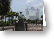 St. Lucie County Greeting Cards - Bonaparte Between Meals Greeting Card by Megan Dirsa-DuBois