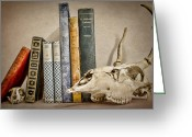 Biologist Greeting Cards - Bone Collector Library Greeting Card by Heather Applegate
