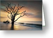 Seafoam Greeting Cards - Boneyard Sunrise - Botany Bay Edisto Island SC Greeting Card by Dave Allen