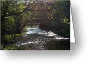 "\\\\\\\""boone County Photo Greeting Cards - Bonne Femme Creek Greeting Card by Cricket Hackmann"