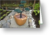 Plant Sculpture Greeting Cards - Bonsai Tree Medium Brown Square Planter Greeting Card by Scott Faucett