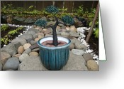 Landscapes Sculpture Greeting Cards - Bonsai Tree Medium Round Blue Ceramic Planter   Greeting Card by Scott Faucett