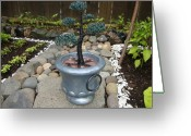 Plant Sculpture Greeting Cards - Bonsai Tree Medium Silver Vase Greeting Card by Scott Faucett