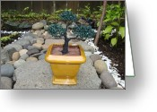 Square Sculpture Greeting Cards - Bonsai Tree Medium Square Golden Vase Greeting Card by Scott Faucett