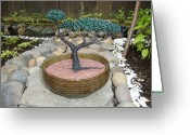 Plant Sculpture Greeting Cards - Bonsai Tree Round Brown Planter Greeting Card by Scott Faucett