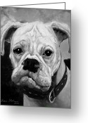 Oil Painting Greeting Cards - Boo the Boxer Greeting Card by Enzie Shahmiri