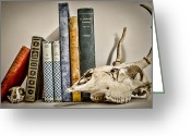 Professors Greeting Cards - Books and Bones Greeting Card by Heather Applegate