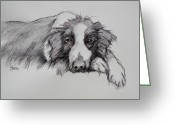 Working Dogs Greeting Cards - Border Collie Greeting Card by Cynthia House