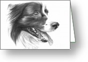 Pet Portrait Drawings Greeting Cards - Border Grin Greeting Card by Sheona Hamilton-Grant