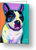 Dawgart Greeting Cards - Boston Terrier - Jack Boston Greeting Card by Alicia VanNoy Call