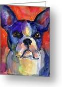 Custom Pet Portrait Greeting Cards - Boston Terrier dog painting  Greeting Card by Svetlana Novikova