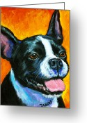 Terriers Greeting Cards - Boston Terrier on Orange Greeting Card by Dottie Dracos
