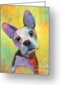 Pet Picture Greeting Cards - Boston Terrier Puppy dog painting print Greeting Card by Svetlana Novikova