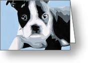Contemporary Dog Portraits Greeting Cards - Boston Terrier Greeting Card by Slade Roberts