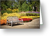 Cheekwood Gardens Greeting Cards - Botanical Beauty Greeting Card by Cheryl Davis