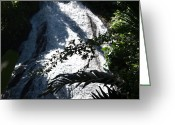 Rain Forrest Greeting Cards - Botanical Waterfall Greeting Card by Tracy Krapf