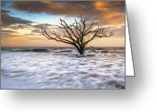 Coastal Landscape Greeting Cards - Botany Bay Edisto Island SC Boneyard Beach Sunset Greeting Card by Dave Allen
