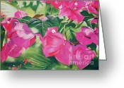Caribbean Art Pastels Greeting Cards - Bougainvillea Greeting Card by John Clark