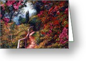 Bougainvillea Greeting Cards - Bougainvillea Path Tuscany Greeting Card by David Lloyd Glover