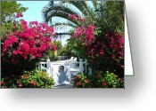 Boca Grande Prints Greeting Cards - Bouganvilla Welcome Greeting Card by Geralyn Palmer