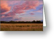 The Lightning Man Greeting Cards - Boulder County Colorado Country Sunset Greeting Card by James Bo Insogna