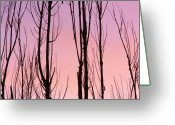 The Lightning Man Greeting Cards - Boulder County Colors of Dusk Abstract Greeting Card by James Bo Insogna